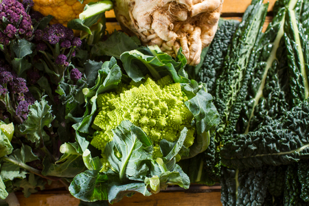 swede: Cornucopia of vegetables from the brassicaceae family: purple sprouting broccoli, swede, black cabbage, with focus on Romanesco caulliflower with its beautiful fractal shapes.