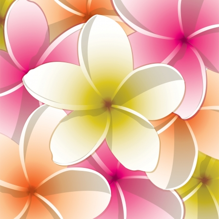 pink plumeria: All occasion frangible card
