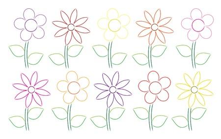 petunia: Hand drawn daisies
