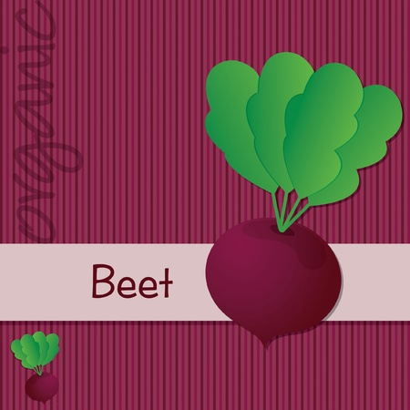 Bright organic Beetroot card Vector