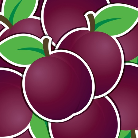 Plum sticker background card Vector