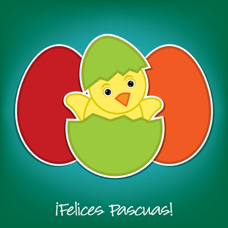 Spanish Baby Chick and eggs Easter card in vector format Vector