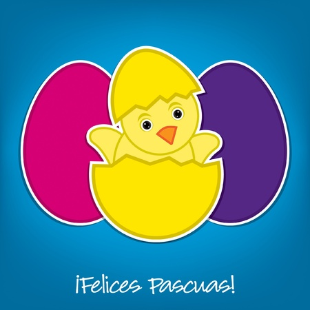 Spanish Baby Chick and eggs Easter card in vector format Stock Vector - 19735063