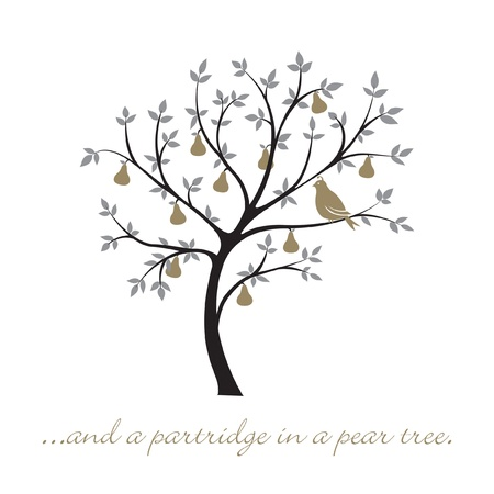 pear: a partridge in a pear tree  Christmas card