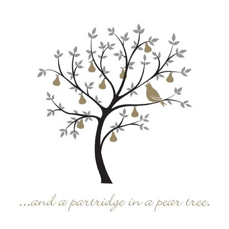une perdrix dans un arbre carte de Noël poire