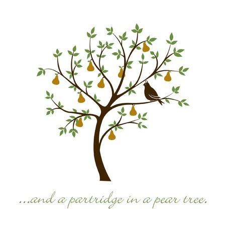 een patrijs in een perenboom kerstkaart