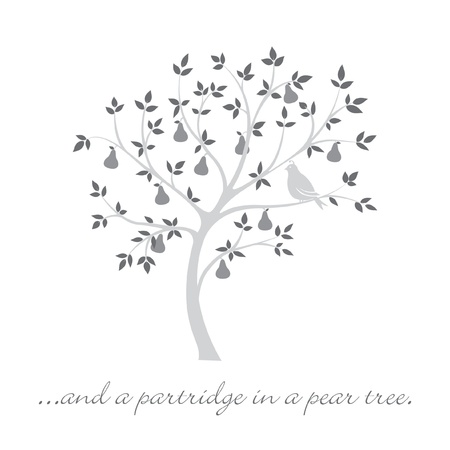 a partridge in a pear tree  Christmas card  Vector