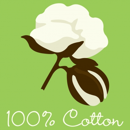 cotton plant: 100  Cotton sign  Illustration