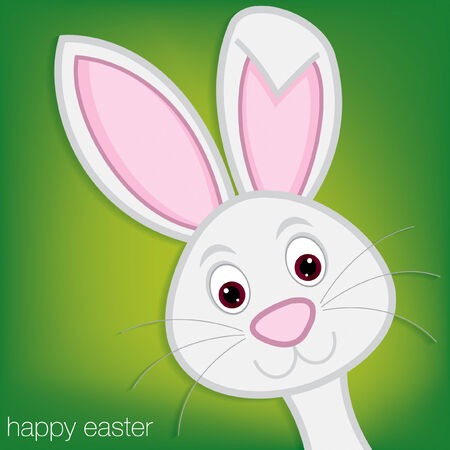 bunny rabbit: Easter Bunny card in vector format