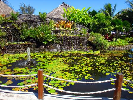 Ornamental fish pond of Jardins de Paofai (Garden of Paofai) in Papeete, French Polynesia. Stock Photo