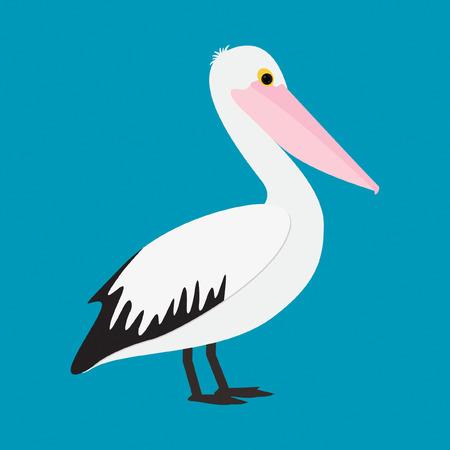 Pelican in vector format. Illustration