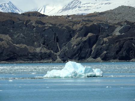 runoff: Scene from Glacier Bay, Alaska