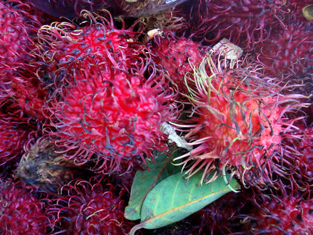 Lychees in the Farmers Market in Hilo, Hawaii. Stock Photo