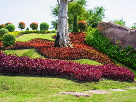 decoraton: Small park of leafy plants and rocks on the slope Stock Photo