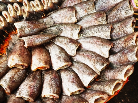Salted fish is made from freshwater fish species , have delicious taste and is economically important