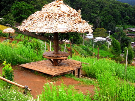 A small pavillion made from bamboo stretcher and nipa leaves roof