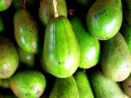 buttery:  Avogado or Schiavo Delgado is a fruit cultivated in tropical climates and rich in nutrients and minerals                                                                Stock Photo