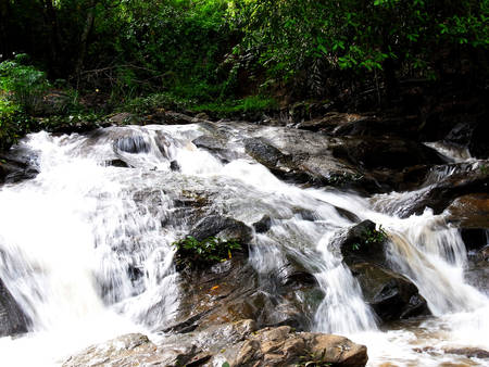 A low rise of natural waterfall in conserved forest in Chiangmai