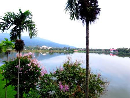 periferia: La vista del lago con un giardino davanti e case, montagne sulla periferia