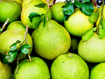 versatile: Grapefruit is a fruit that is versatile and also has medicinal properties to treat various diseases                                                                 Stock Photo