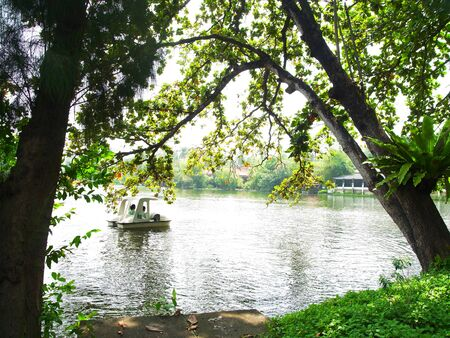glistening:  Scenic view of lake and garden with glistening of water surface