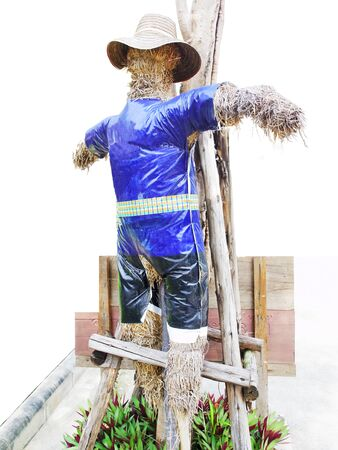 Scarecrow is made from rice straw to set up in the field to frighten birds