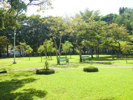 city people: A public park with lush green trees for city people  Stock Photo