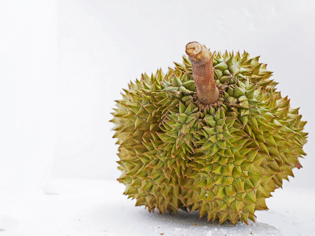 lobes: A durian with multiple lobes of flesh inside  Stock Photo