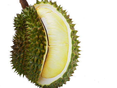 flesh: Durian , the king of fruit , and its flesh