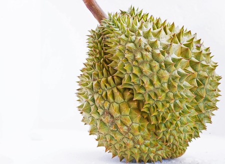 A durian with multiple lobes of flesh inside                                                               Stock Photo