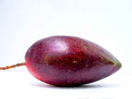 distinctive flavor: The mango hybrid of two species of mango in Taiwan to give distinctive flavor and much more fruit weight.