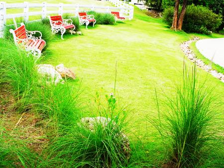 semicircular: A semicircular area of lawn and seats in a garden.