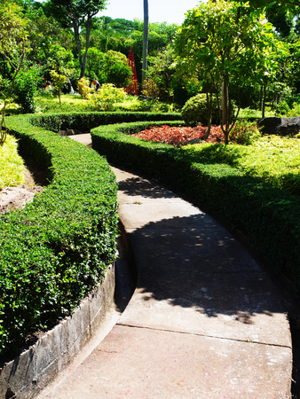 ebony: S- shaped concrete path leads through a formal garden of ebony and various types of trees.