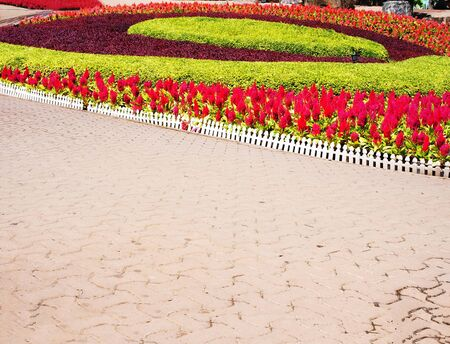 A designated garden of flowers and leafy plants  in  Pataya ,Thailand. This photo was taken in August 2014.