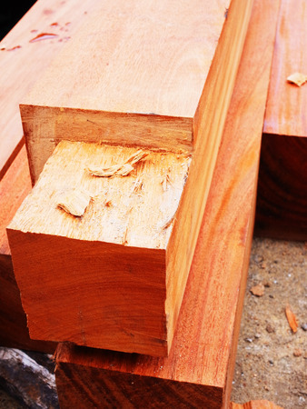 woodwork: Cut surface of log wood and sawdust as part of woodwork. Stock Photo