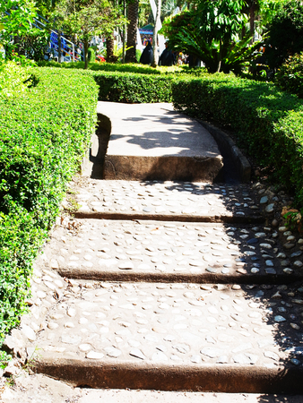 concrete steps: A concrete steps leads up to a small slope in a garden. Stock Photo