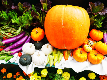 greeen: The various parts of plants that can be used as food . Pumpkin , gourd  , chilli , cabbages , leafy vegetables , purple eggplants , tomatoes etc.