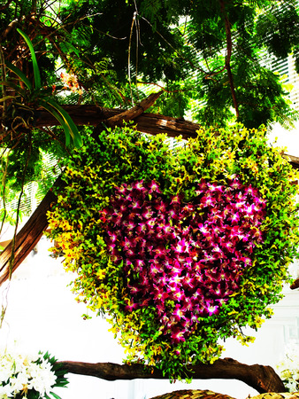 epiphyte: Dendrobium orchids are arranged into heart - shaped figures  hanging from big branches outside a building.