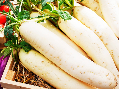 pungent: Daikon or Chinese white radish is an edible root vegetable with tough and pungent flesh.