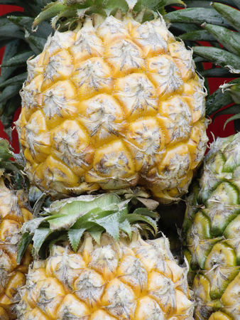 flavors: Pineapple is a tropical fruit that has sweet and tart flavors. Stock Photo