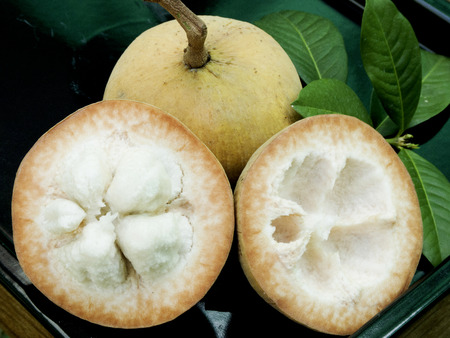lobes: Santol fruits are tropical fruits with yellow skin and whit fluffy flesh.