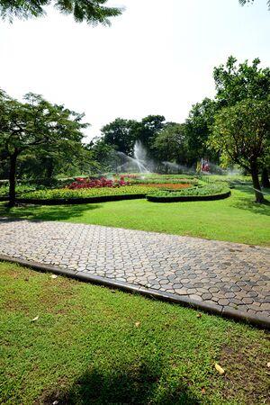 sirikit: The formal gardening design of Queen Sirikit Park , Bangkok , Thailand.