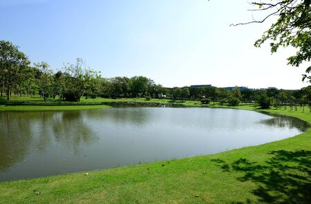 curvature: The landscape of Queen Sirikit Park shows a row of big trees on a lawn  lined along the curvature of a lake . Stock Photo