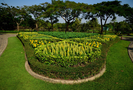 sirikit: Various kinds of flowering plants grown together in Queen Sirikit park , Bangkok , Thailand.