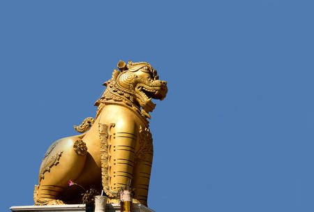 guarding: The golden lion statue stands guarding at a gate of a temple.