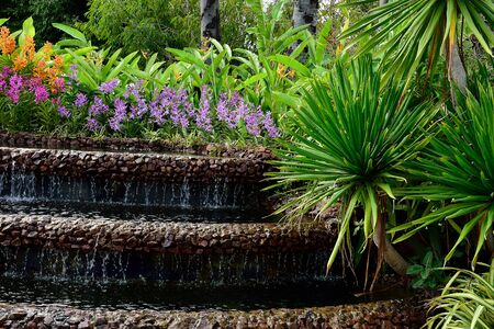 arboles frondosos: Garden arrangement by using flowering plants , leafy plants , trees and waterfalls .