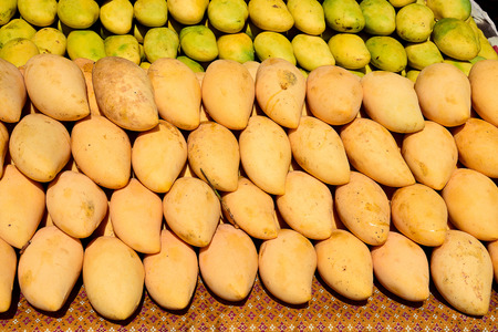 nutriment: Ripe mangoes have yellow peel , sweet flavor and are juicy for eating.