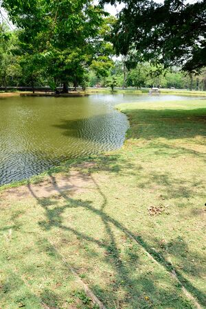 pleasantness: Tree shadows lyning on grass field which curves   along a lake bank in a city garden. Stock Photo