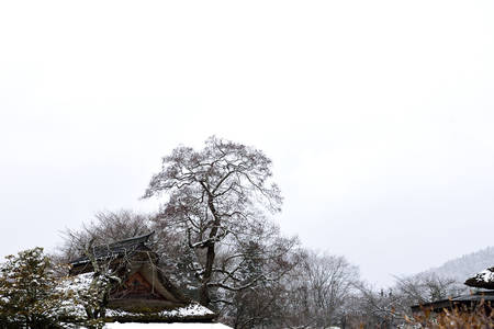 ove: Snow was  falling and covered ove roof top , tree tops and mountainous areas. Stock Photo