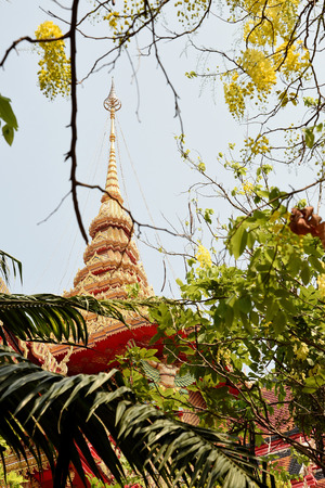 branching: The golden Thai temple with yellow cassia flowers in the foreground.